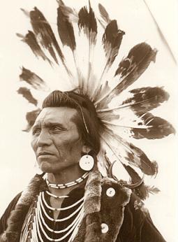 Chief Eagle