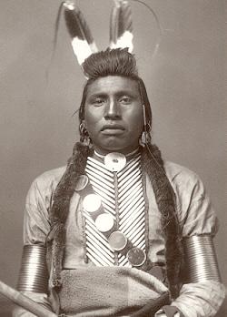 Chief White Bull
