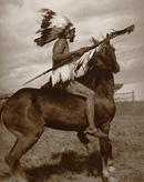 Young Crow Warrior