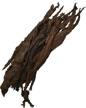 Giant Dark Fire-Cured - Tobacco Leaves